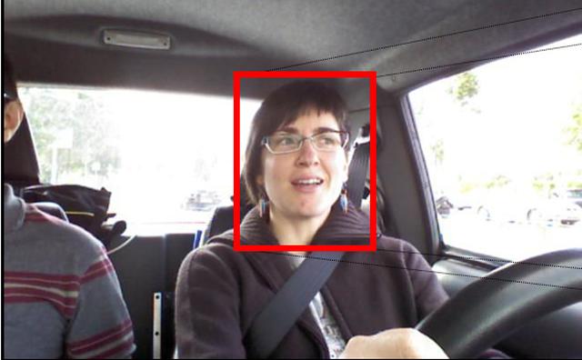 CVC11: Driver Face dataset (DrivFacce)